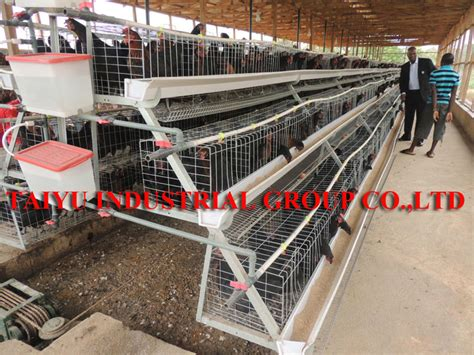 modern poultry house design modern poultry farm house designs house design