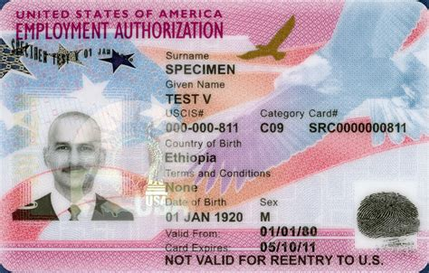 us green card photo template 4 2 automatic extensions of employment authorization