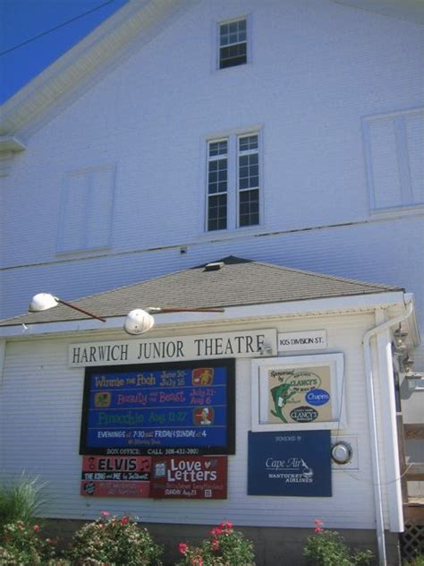 cape cod theaters cape cod is going to miss us the bird diaries