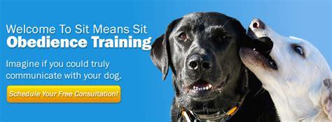 puppy classes chicago chicago il sit means sit