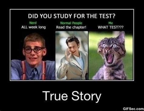Studying Meme - hilarious study abroad bitch meme 03 jpg memes