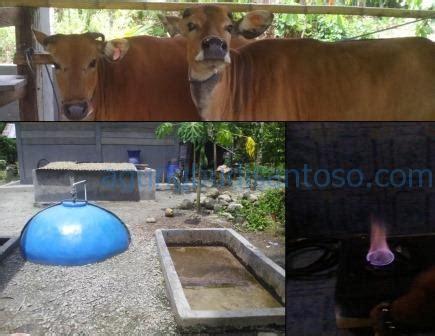 Harga Pupuk Kandang Sapi 2017 analisis pendapatan sistem integrasi tanaman ternak