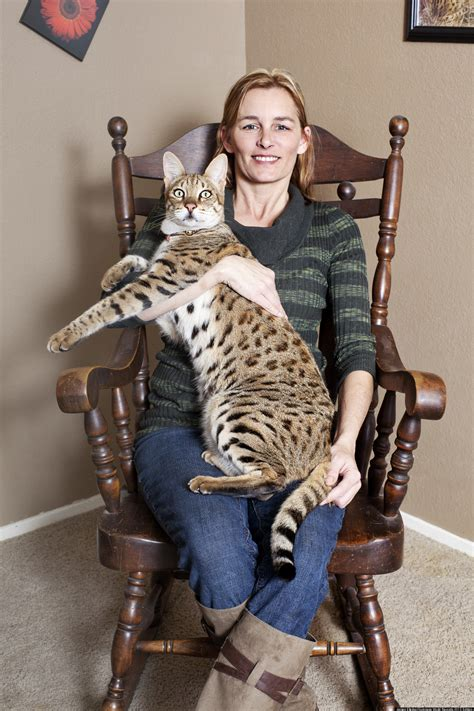 Guinness World Records 2013 Honorees Include Tallest Cat