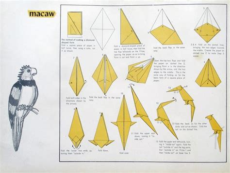 How To Make A Paper Parrot Step By Step - 116 best images about origami birds on origami