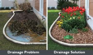 landscaping around house foundation home charlotte landscape drainage