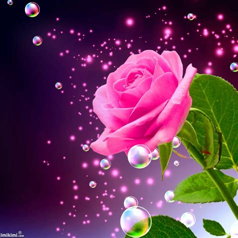 new year wishes with rose flowers happy new year flower 29 happynewyearwallpaper org