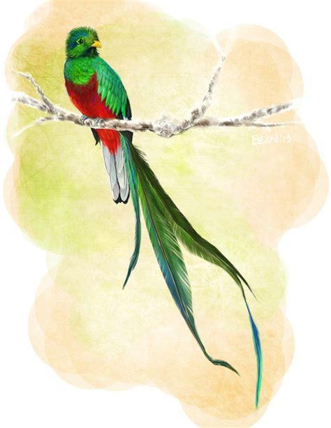watercolor quetzal tattoo quetzal vector search graphic design