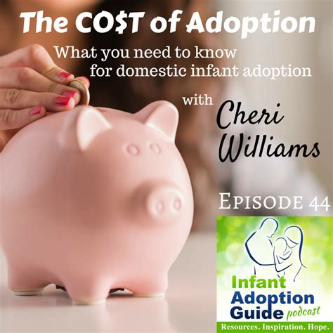 cost of adopting a iag 044 the cost of adoption infant adoption guide