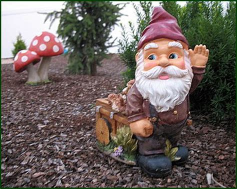 Garden Gnome Names by Gnome Pictures Pics Images And Photos For Inspiration