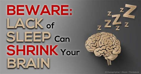 Brain Shrinks To Detox At by Lack Of Sleep Causes Both Brain Damage And Brain Shrinkage