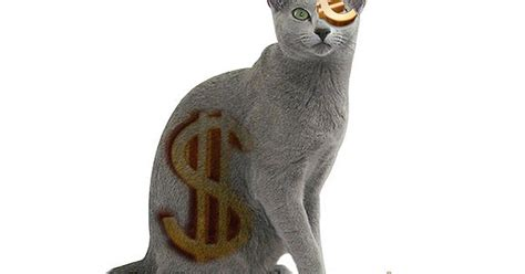 Router Paling Mahal 10 jenis kucing paling mahal di dunia