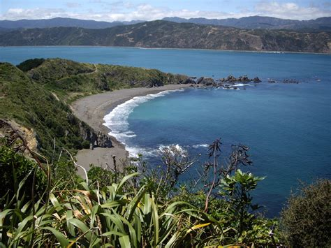 Looksee Wellington by New Zealand S Tech City Will Pay For Your Holiday If You