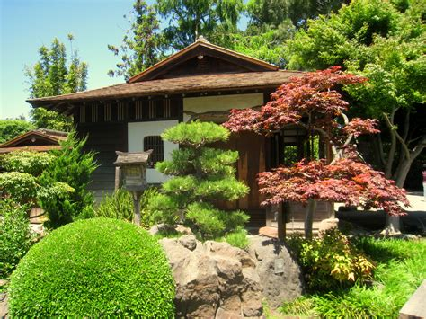 file japanese tea garden san mateo ca img 9095 jpg