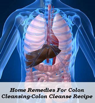 Effective Colon Detox Methods by 528 Best Images About Health Remedies 1 On Flu