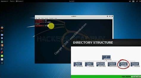 linux tutorial videos for beginners دانلود kali linux tutorial for beginners آموزش مقدماتی