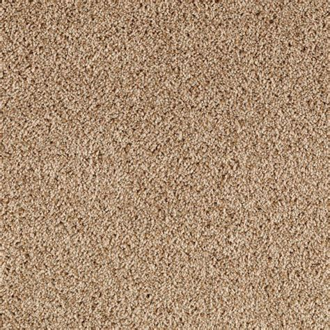 home decorators collection carpet sle rookie ii