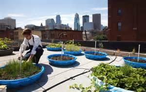 les chefs cultivent leurs jardins m 234 me sur les toits