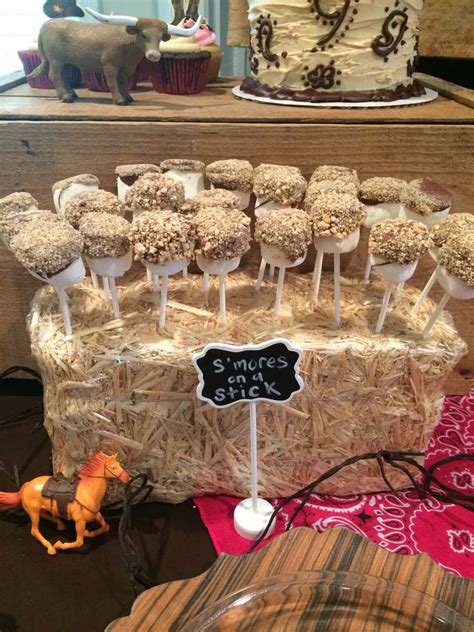 country style birthday ideas birthday ideas photo 8 of 14 catch my