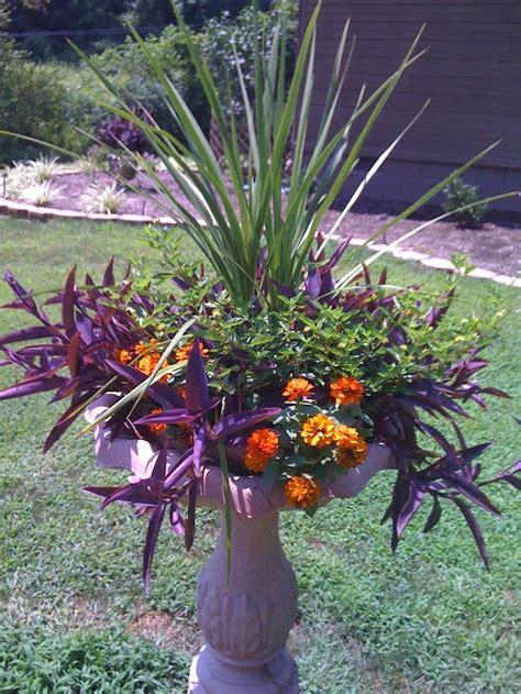 turn birdbath into a planter into the garden