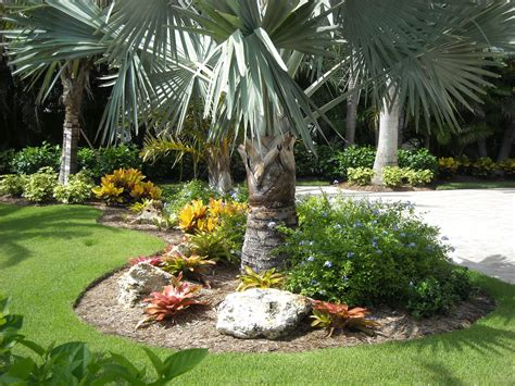 florida garden landscape ideas photograph ideas south