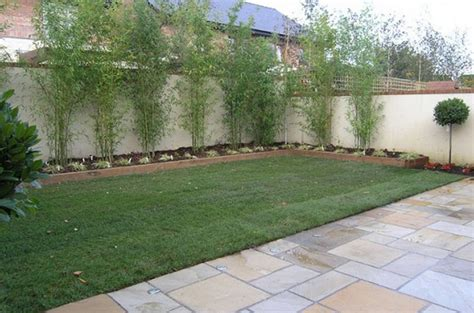 Simple Backyard Design Ideas Top Shrub Fence Related Keywords Wallpapers