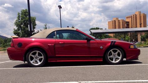 2004 mustang colors 2004 ford mustang color options