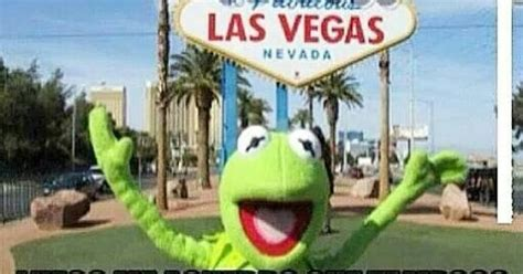 Memes De Las Vegas - las vegas kermit meme espa 241 ol quotes pinterest