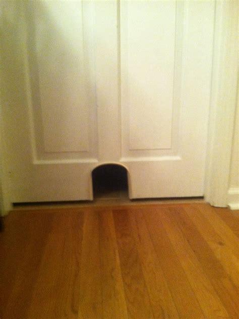 cat door basement ideas pinterest doors we and cats