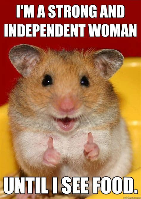 Hamster Meme - site unavailable