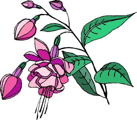fiori clip clipart fiori c143 clipart della natura