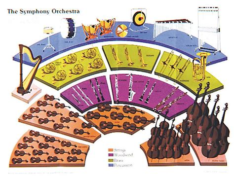 four sections of an orchestra symphony orchestra poster instruments of the orchestra