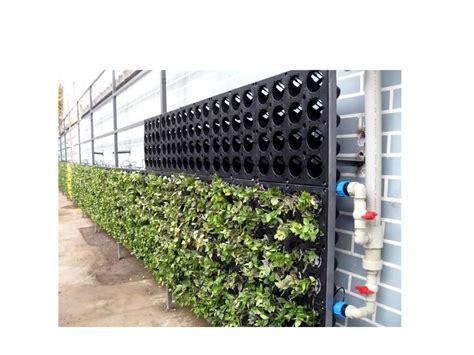 Vertical Garden Cost Green Wall System Living Wall System Vertical Garden