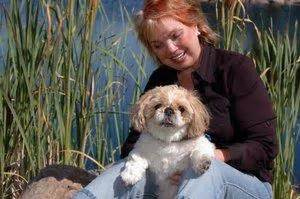 shih tzu and allergy sufferers hypoallergenic breeds