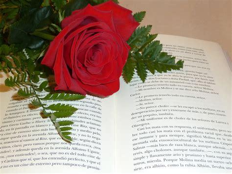 libro rosa de cendra propuestas de sant jordi de editorial milenio
