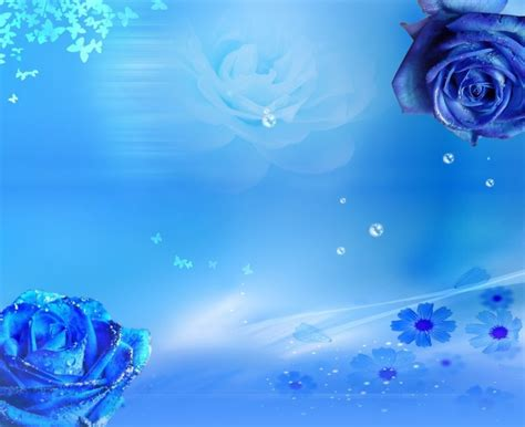 wallpaper cantik warna biru fondo con rosas azules imagui
