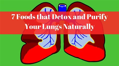 How Do You Detox Your Lungs by 7 Foods That Detox And Purify Your Lungs Naturally