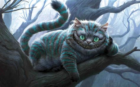 cheshire cat cheshire cat wallpapers hd wallpapers