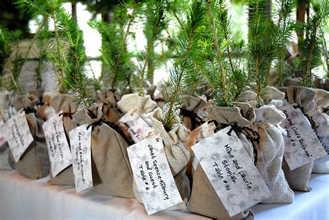 Wedding Favors Trees wedding trees for wedding gifts wedding favors and
