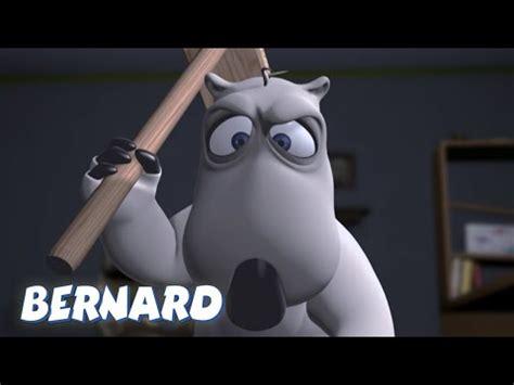 bernard the intruder bernard the intruder and more 30 min compilation