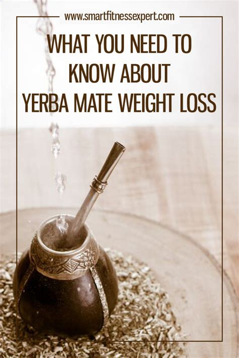 Yerba Mate Weight Loss what you need to about yerba mate weight loss smart