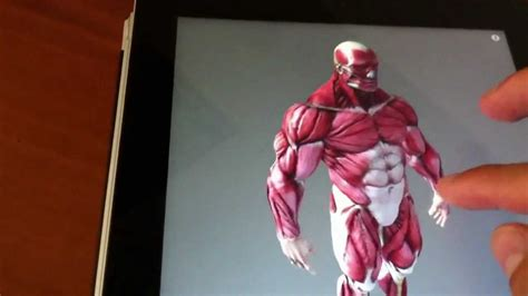 What Is The Best Anatomy App