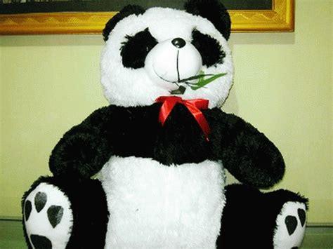 Boneka Panda Warna jual boneka panda jumbo boneka laris