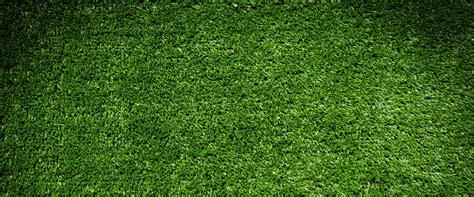 synthetic grass alternative uses in phoenix az