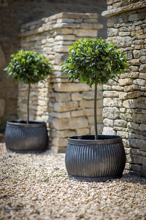Large Garden Planters And Pots by Planters Pots Galvanized Metal Containers With