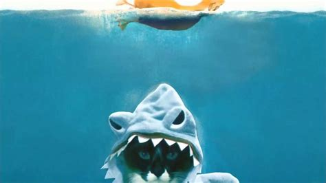 jaws cat boat roomba shark cat jaws remix with movie poster intro
