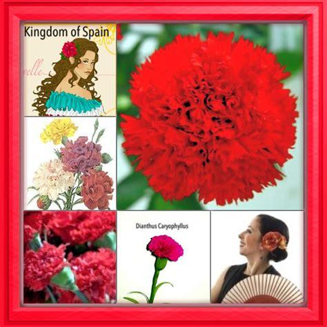 botanical flower carnation italian 11 national flower series southern europe 1 kingdom of spain dianthus caryophyllus carnation