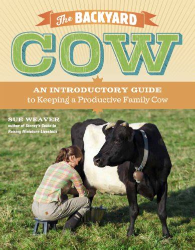 backyard dairy cow the backyard cow an introductory guide to keeping a
