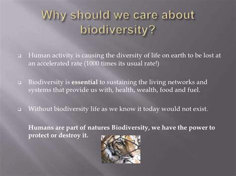 My Actions To Conserve Biodiversity Essay by Biodiversity
