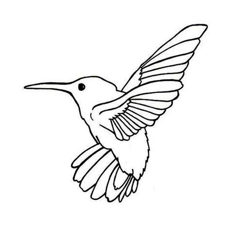 free printable hummingbirds cartoon hummingbird coloring page free printable