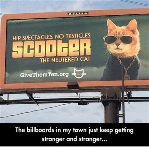 Billboard Meme - 25 best memes about spectacle spectacle memes